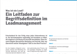 leadmanagement_2_ansicht